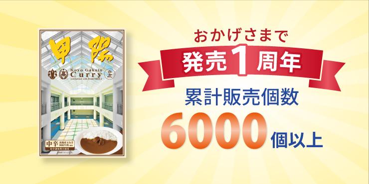 21bnr_koyocurry-set_740X370